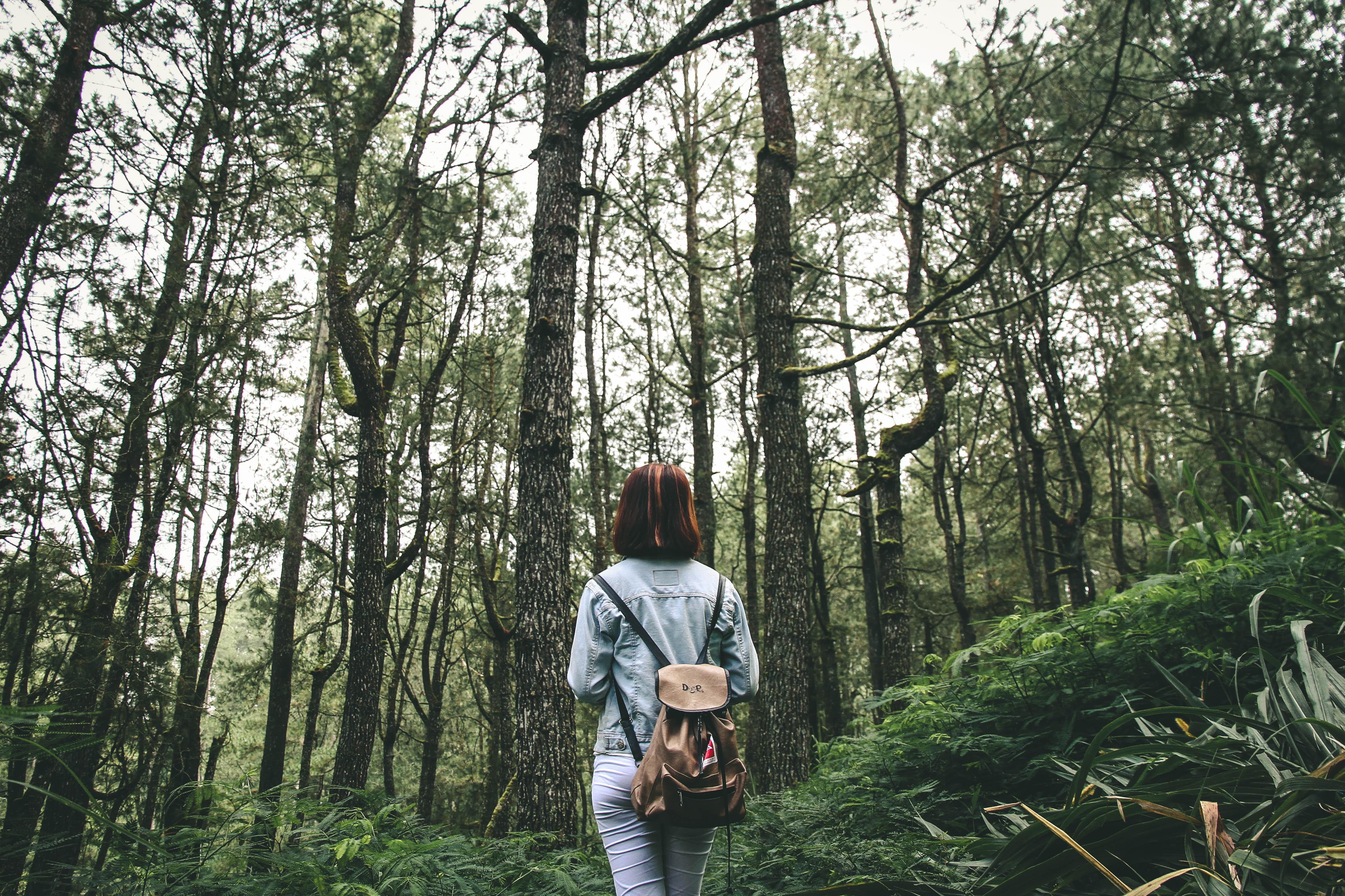 mujer de espaldas en mitad de un bosque con una mochila a la espalda